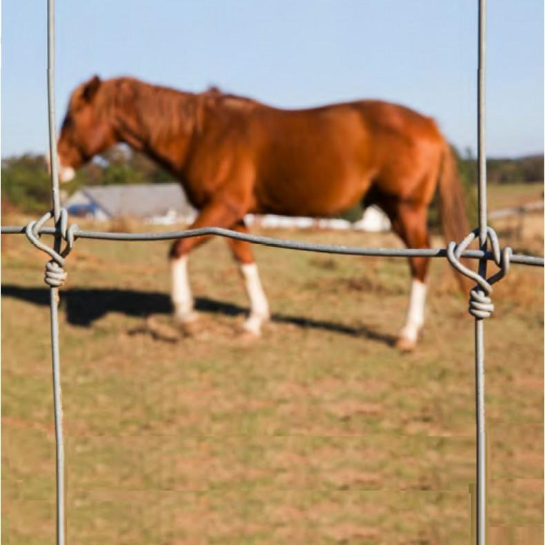 Malla ganadera anudada reforzada. 2,44 m. de alto 244-20-15. Rollo 100mts lineales. Con nudos antideslizantes.